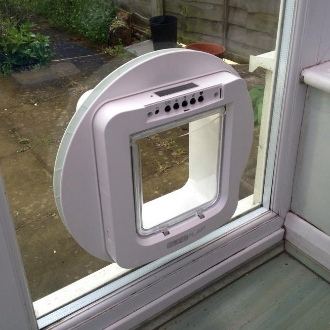 Staywell Cat Flap Problems
