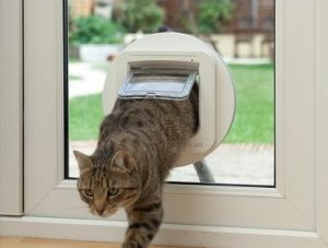 Chipping Norton Cat Flap Company